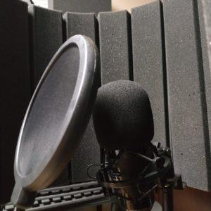 Поп-фильтр для микрофона (150х350х45 мм)